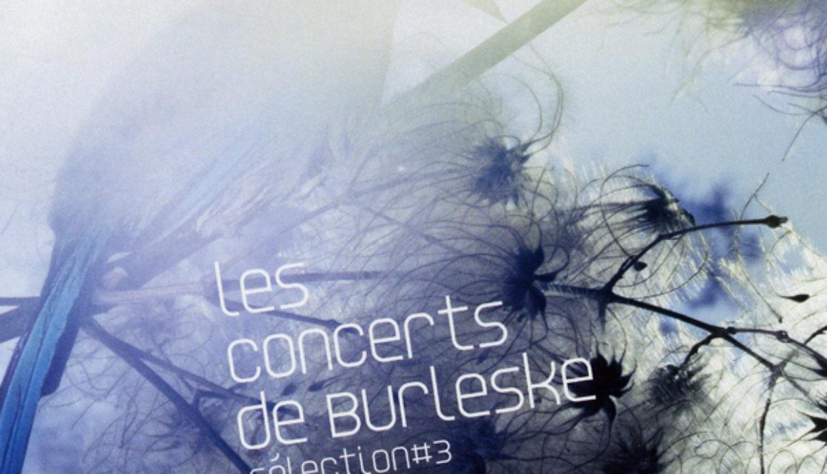 Les concerts de Burleske